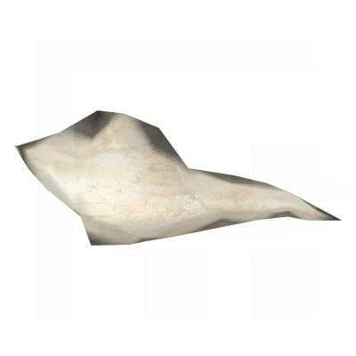 Pflugscharbein-Vomer