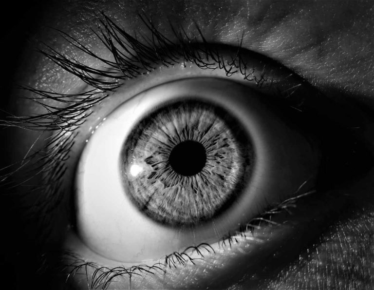Was ist Irisdiagnostik?