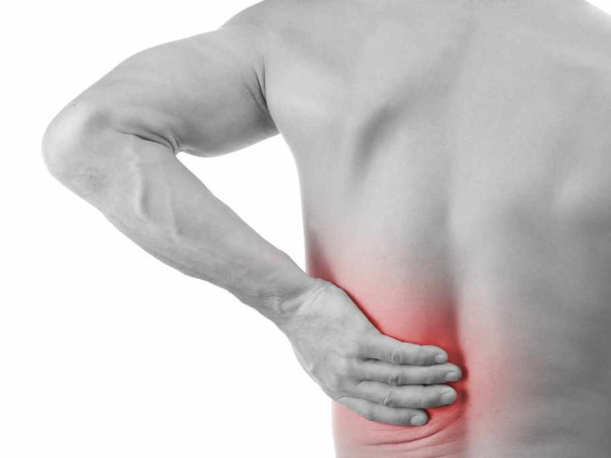 Rückenmuskulatur Übersicht | Der Mensch