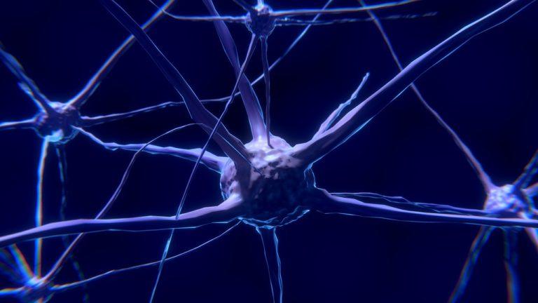 Allgemeine Zellphysiologie