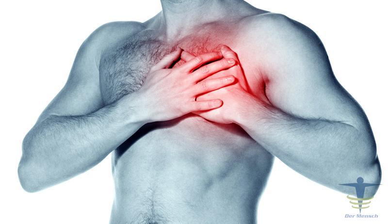 Wichtige Begriffe rund ums Herzzeitvolumen